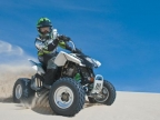 Arctic Cat DVX300